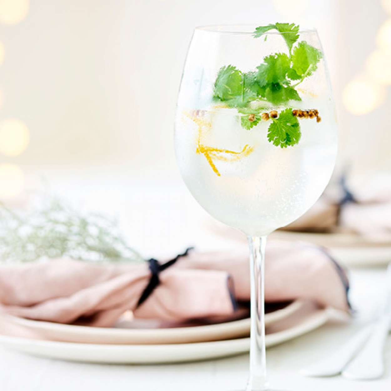 Recette Gin tonic aromatisé coriandre agrumes Carrefour